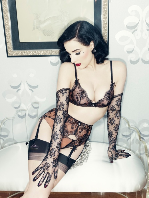 dita_von_teese_lingerie_savoir_faire_bra_and_brief_778115284_north_522x